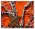 wtp-311_mothwing-gameday_orange